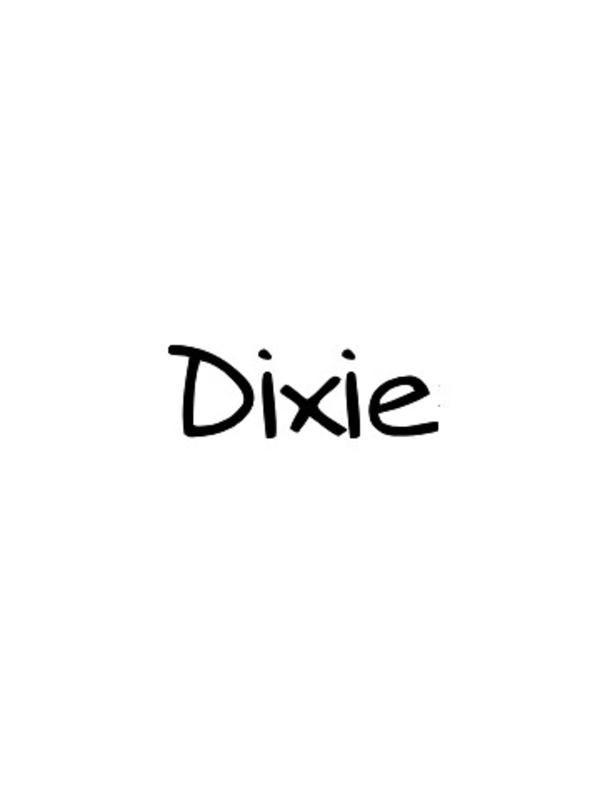 Dixie SS18