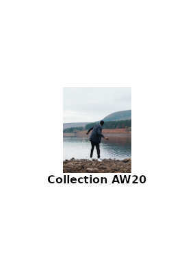 Collection AW20 Lyle&Scott